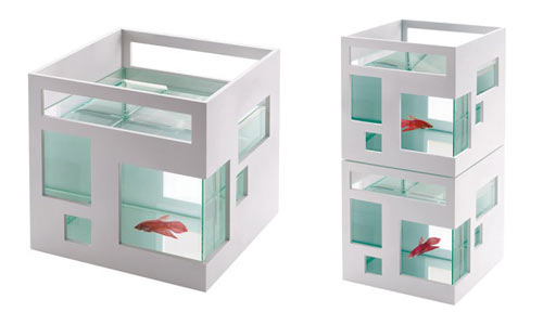 Fish Hotel best of office weekend roundup 12