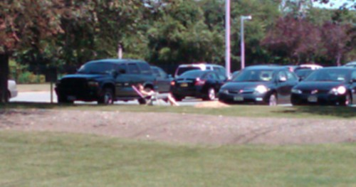 Sun bathing in parking lot full 500x263 best of office weekend roundup 11