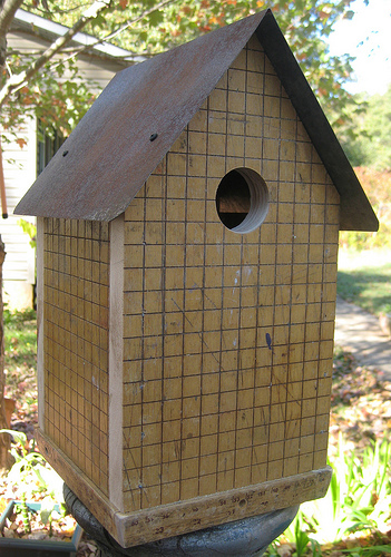 paper cutter birdhouse best of office weekend roundup 52