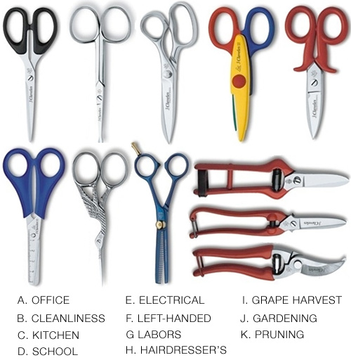 different-types-of-scissors
