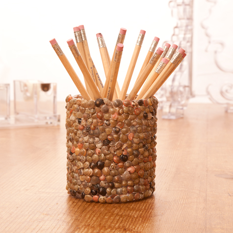 seashell pencil cup best of office weekend roundup 85