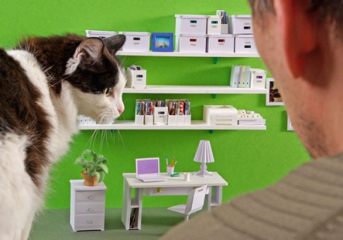 love books love stationery 4 500x350 Mini Desk or Giant Cat?