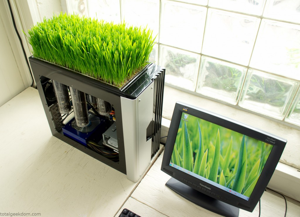 grass-growing-computer
