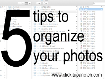 organize photos Best of Office Weekly Roundup 175