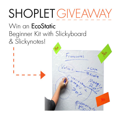 giveaway-blog_ecostatic