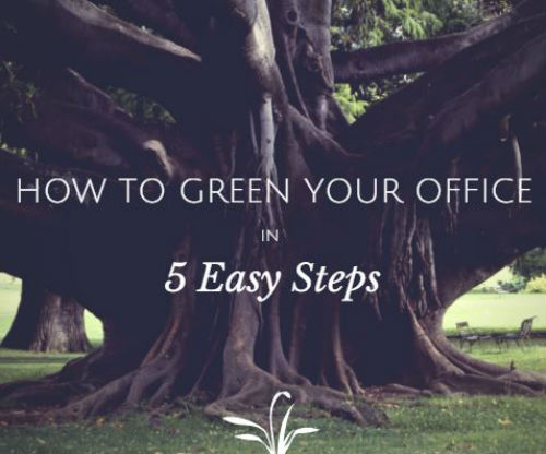 HOW-TO-GREEN-YOUR-OFFICE