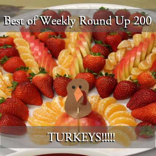 Fruit-Turkey-Blog-Master