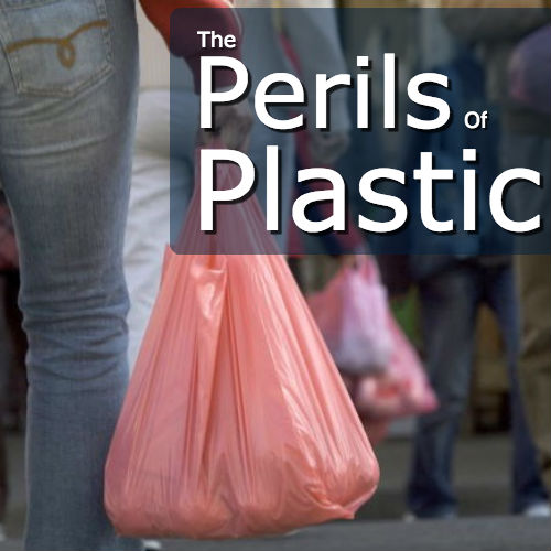 Plastic bags and the environment