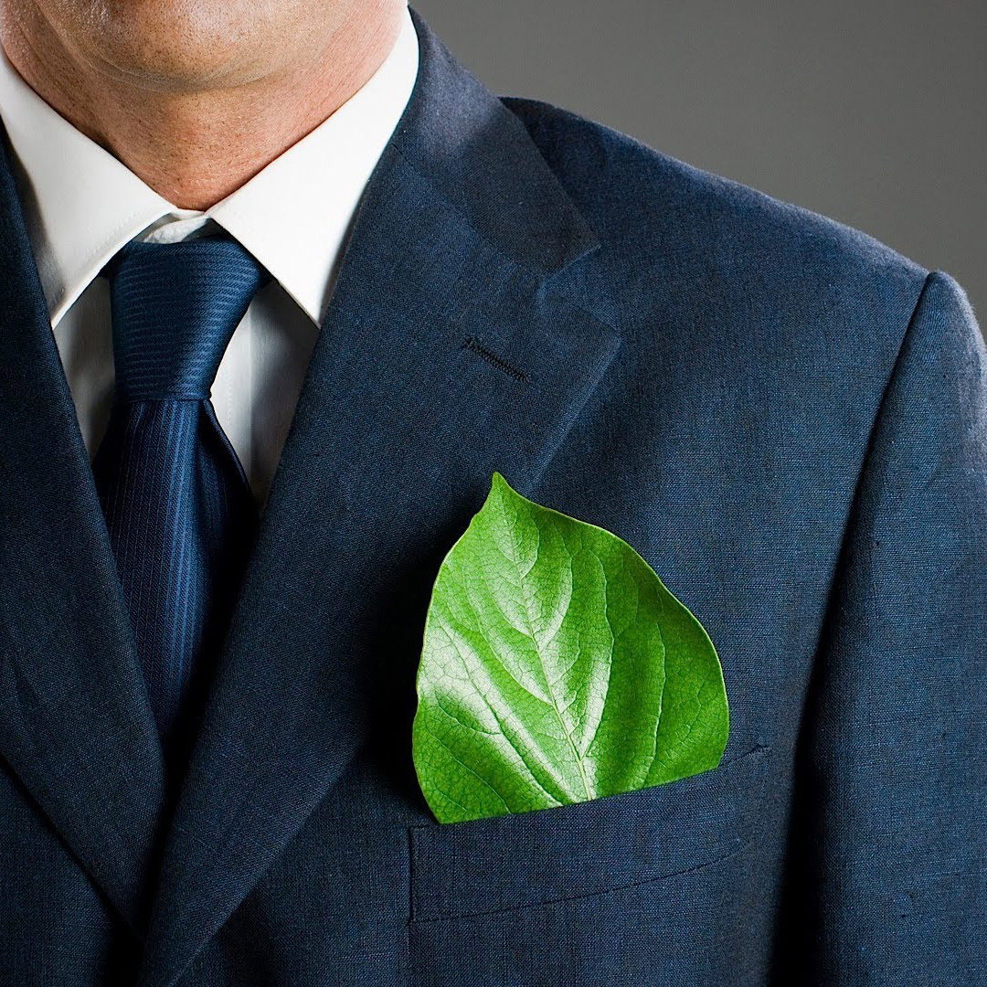 Green Careers To Satisfy Your Inner Tree Hugger